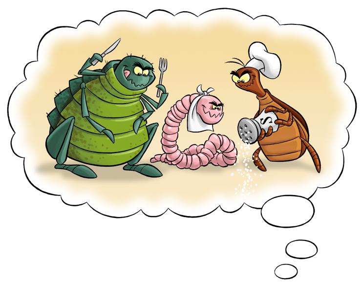 präparate von parasiten im körper anzeichen chefkoch.jpg
