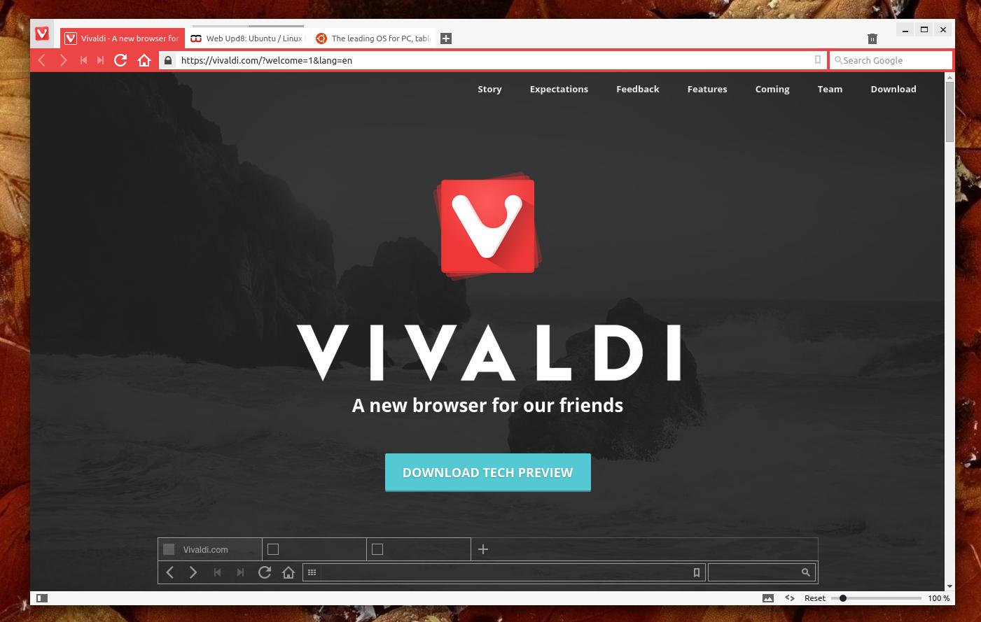 Pensando em um novo browser? Conheça o Vivaldi