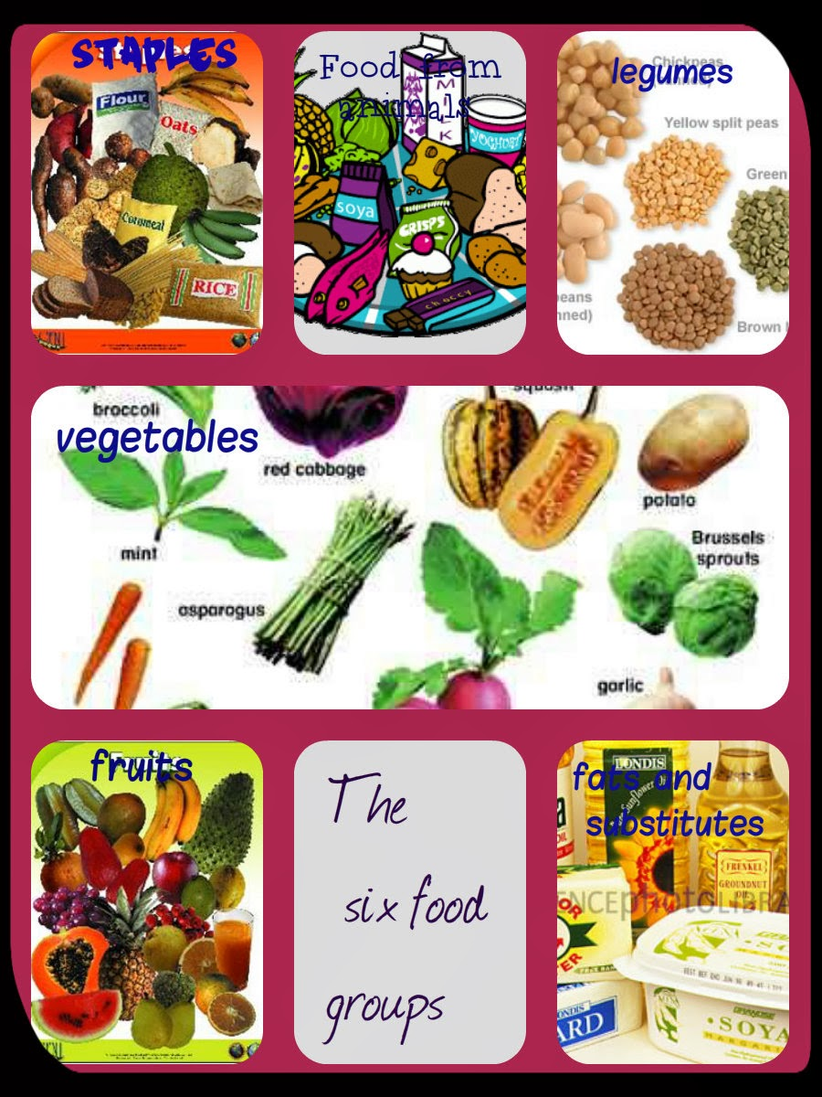 Teaching: A collage with the six food groups