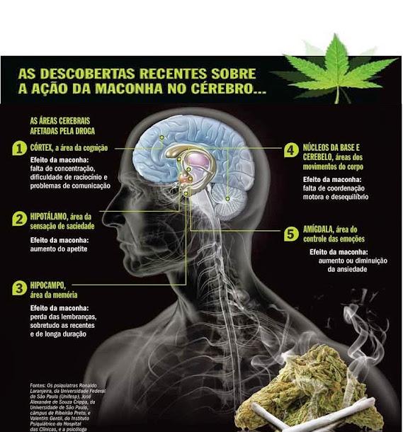 O consumo regular de maconha pode alterar o cérebro.