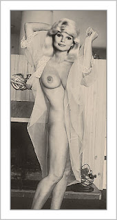 loni anderson nude high society