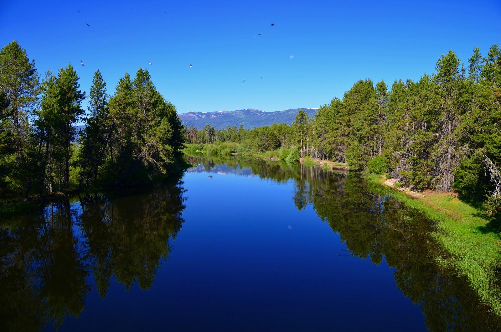 Back to summer my life for Cascade lake idaho fishing