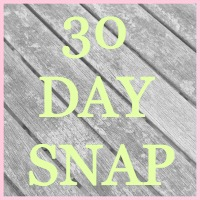 30 Day Snap Sprinkleofglitter