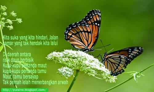 Puisi Cinta : Kupu-Kupu Sampe Engtay -karya Tan Lioe Le