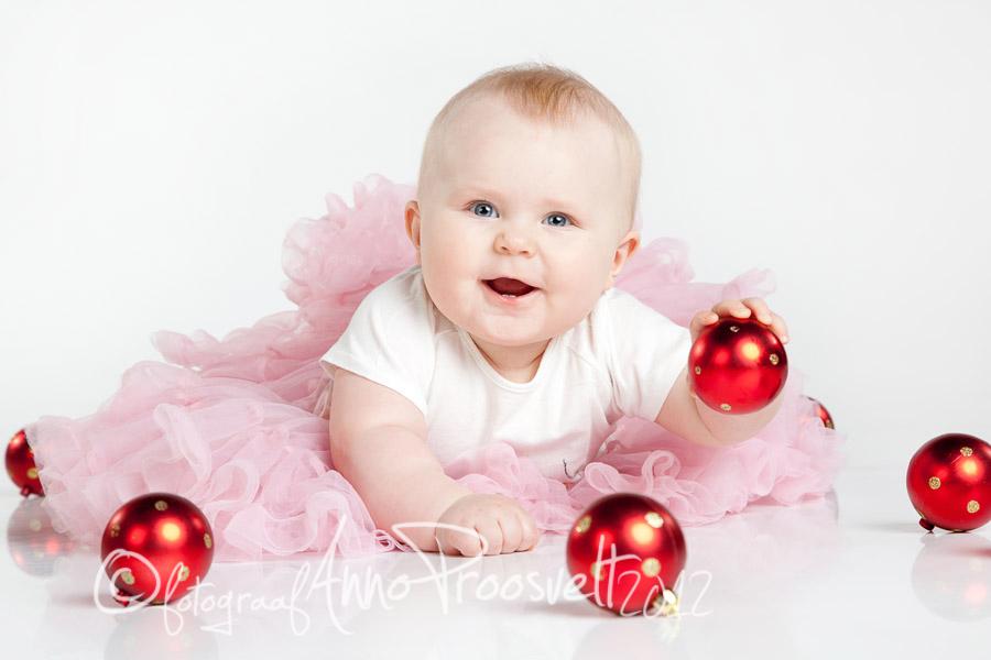 joulud-beei-fotopesa-kuuseehted