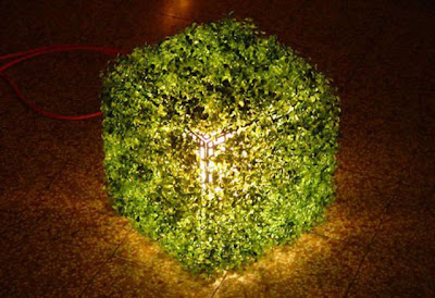 Go Green Seen On www.coolpicturegallery.us