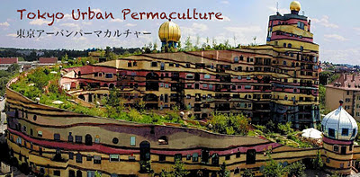 Tokyo Urban Permaculture