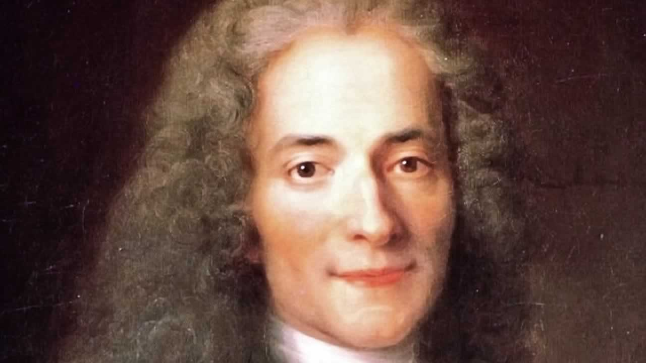 Quotes Voltaire The Cult Of Genius  Behind Every Successful Man Stands A Surprised.