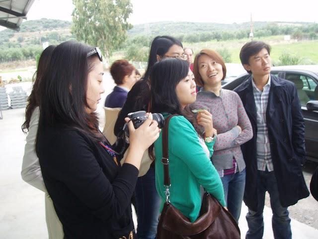 Οι Κινέζοι είδαν την ανωτερότητα και ποιότητα του Τριφυλιακού ελαιολάδου