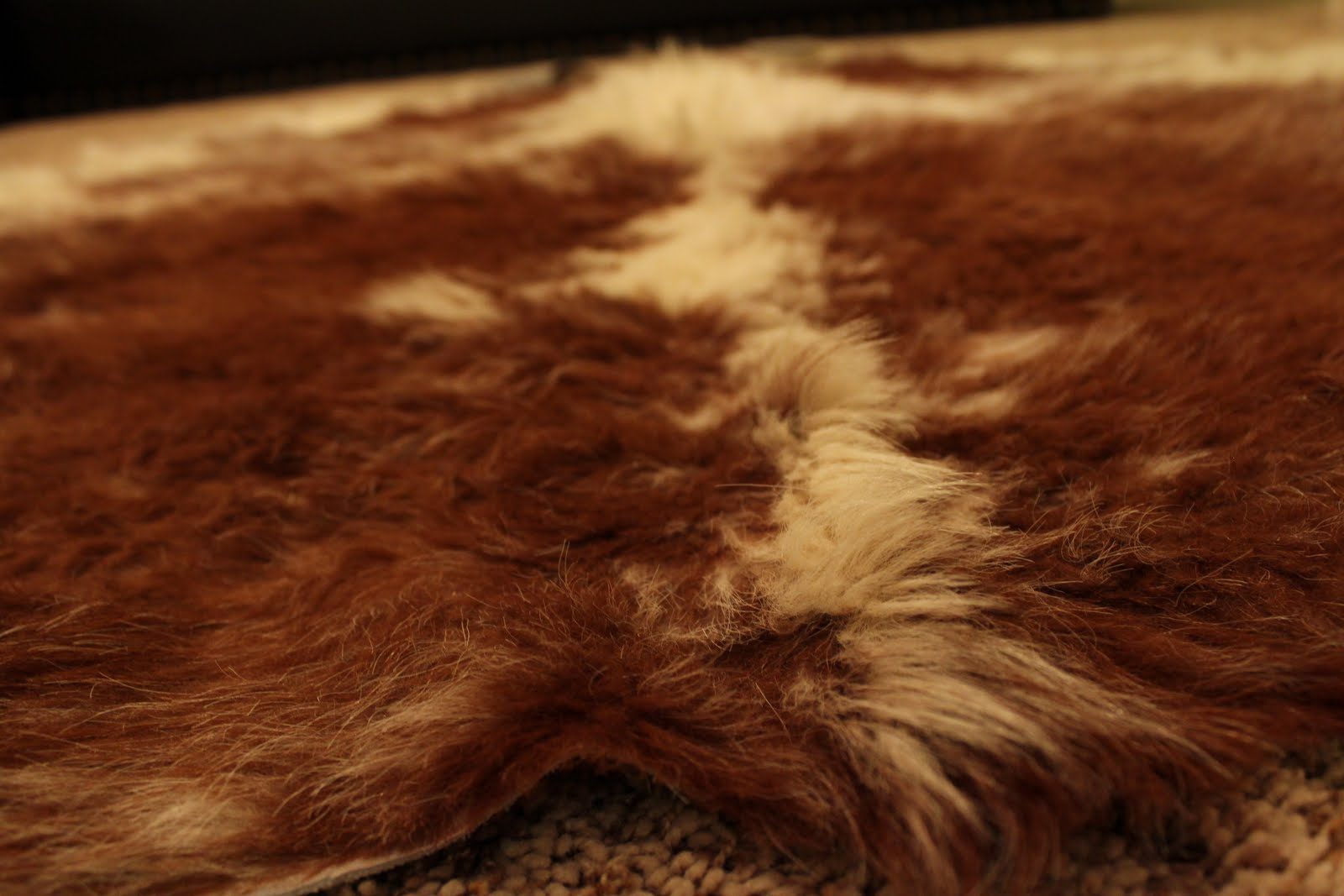 Garage Sales R Us  Animal Skin Rug