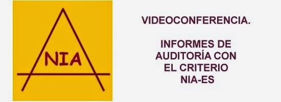 Videoconferencia Informes de Auditoría con el criterio NIA-ES. 85 euros