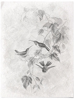 http://4.bp.blogspot.com/-B7lONxEl-1w/Vg88WMcLQjI/AAAAAAAA_68/RNq0FhOcn7M/s320/HummingbirdsPlayVintageSketch_TlcCreations.jpg