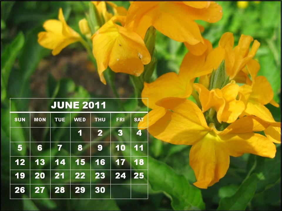 june 2011 calendar printable. June 2011 Calendar Printable
