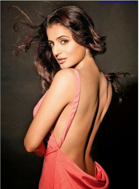 Ameesha Patel hot backless hd picture