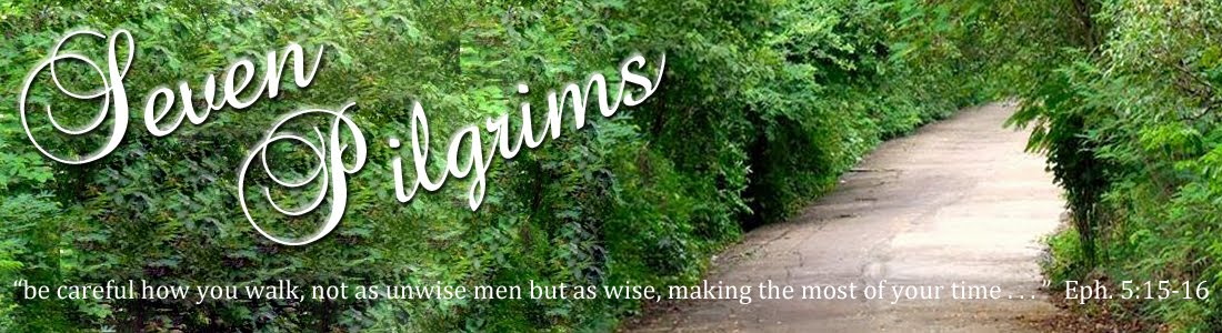 Seven Pilgrims
