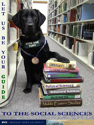 black Lab GDB puppy beside a stack of books in a library