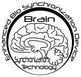 Brain Synchronizer