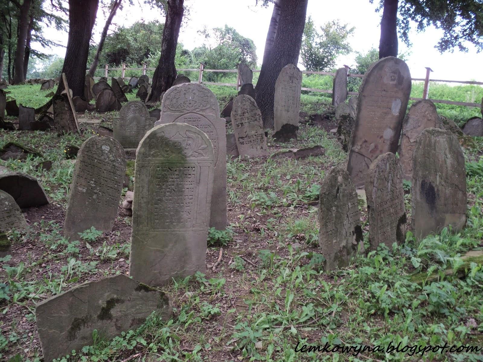 Nowy Żmigród. Cmentarz Żydowski.