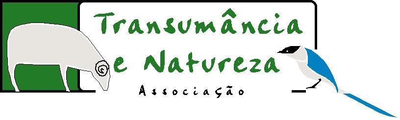 Bem vindo | welcome !
