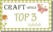 V Craft-alnici sem bila izbrana med TOP 3 izdelke