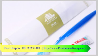 Supplier Dental Kit Penginapan, Grosir Dental Kit Hotel, Grosir Dental Kit Penginapan