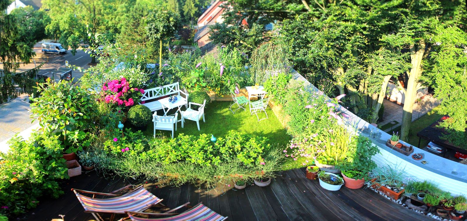 ein cottage garten auf dem dach update in der morgensonne. Black Bedroom Furniture Sets. Home Design Ideas