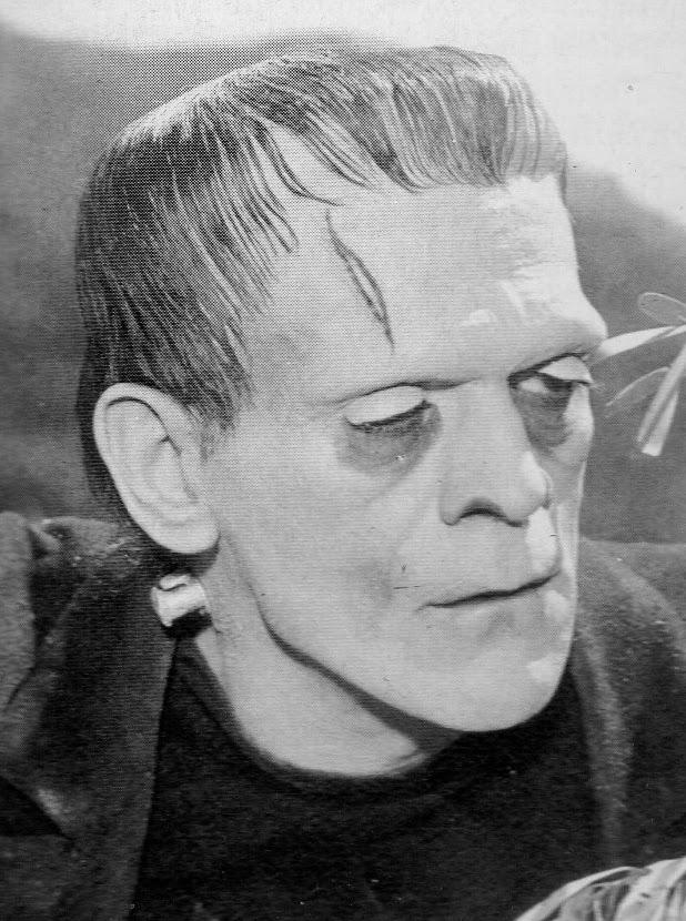 Valls court-circuite Lebranchu - Page 2 Frankenstein