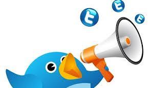 dinero por encuestas en twitter