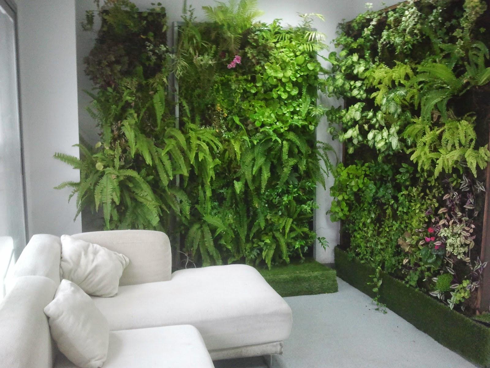Como hacer un jardin vertical - Plantas para jardines verticales ...