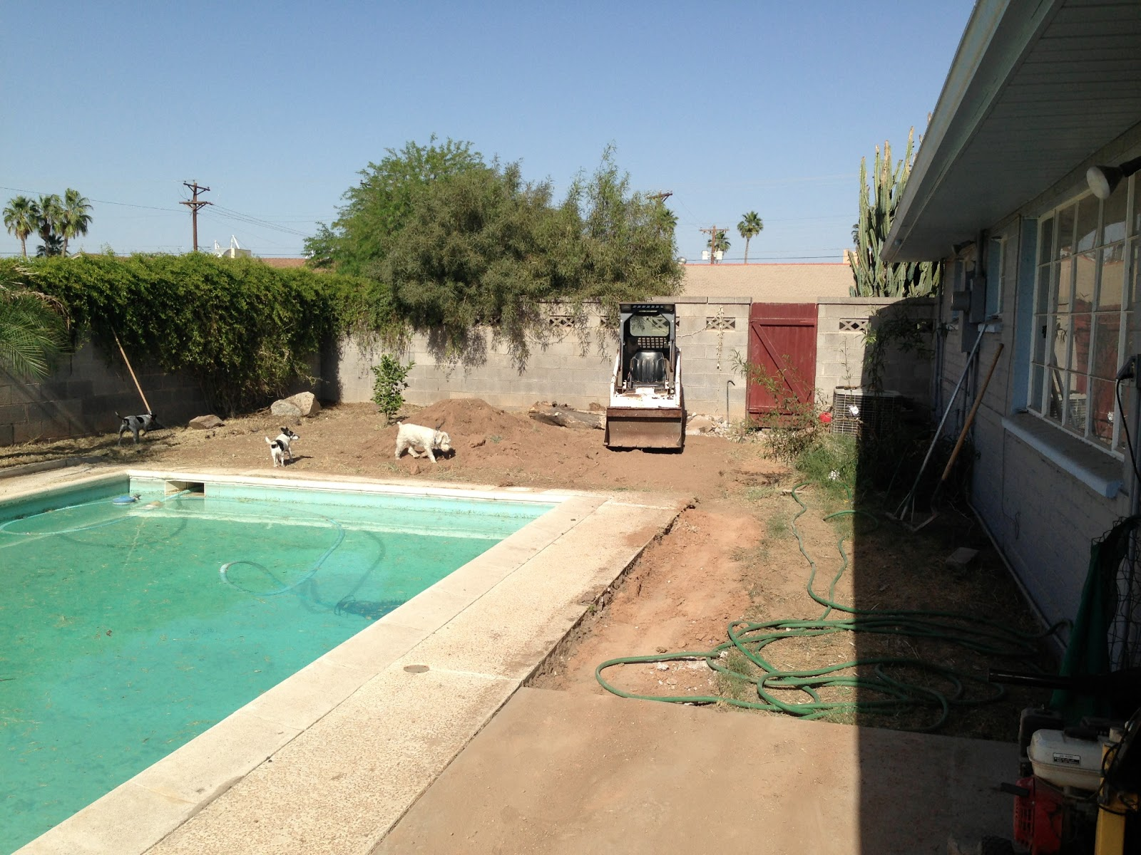 A Little Blueberry: Backyard Remodel & Pool Net