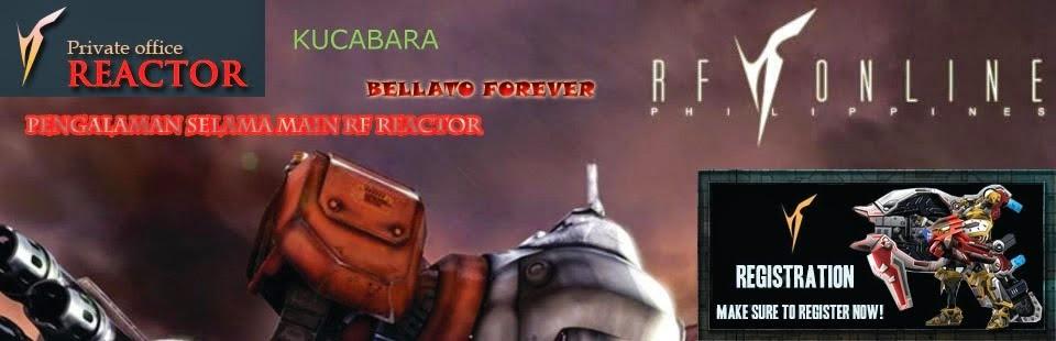 Bermain RF Reactor