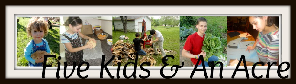 Five Kids & An Acre