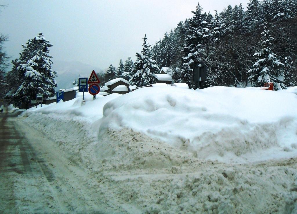 I d protrar torpidi snowboard di fondo - San pietro in bagno ...
