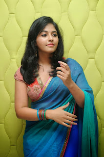 Actress Anjali Latest  Pictures in Saree at Masala Audio Launch  0020