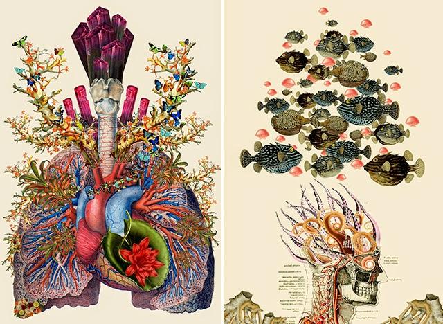 Anatomy Drawings With A Creative Twist Centersaturday Girl Sa