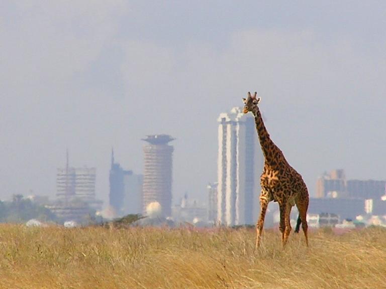Nairobi Kenya  city photos gallery : Nairobi, Kenya My Pakistan