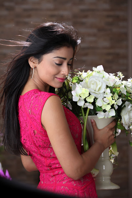 Shriya actress, Shriya wiki, Shriya tamil actress, Shriya movies, Shriya wallpapers, Shriya gallery, Shriya fat,actress Shriya, Shriya hot, Shriya height, Shriya photos, Shriya videos, Shriya without dress, Shriya pics, Shriya scandal, Shriya weight, Shriya songs, Shriya hot photos,hot Shriya, Shriya images, Shriya weight gain, Shriya saree, Shriya dress change, Shriya photo, Shriya latest pics, Shriya hot pictures,tamil actress Shriya, Shriya photo gallery, Shriya pictures, Shriya hot image, Shriya indian actress, Shriya hot images, Shriya kapoor pictures, Shriya fake, Shriya pic, Shriya kapoor photos, Shriya hot photo, Shriya new pics, Shriya navel, Shriya kapoor video,indian actress hot Shriya, Shriya Hot Hd Wallpapers, Shriya hd wallpapers, Shriya hot saree stills, Shriya saree hot, Shriya hd pictures, Shriya backless pictures, Shriya hot navel show, Shriya  legs, Shriya lips, Shriya eyes, Shriya ads, Shriya twitter, Shriya facebook,telugu actress Shriya hot, Shriya high resolution pictures, Shriya hq pics,south indian actress Shriya hot,Bollywood Shriya hot,Shriya,Shriya hot hd wallpaepers,Shriya hd wallpapers,Shriya biography,Shriya hot,Shriya hot stills,Shriya hot photoshoot,Shriya photoshoot,Shriya latest photoshoot,Shriya hot navel show,Shriya navel show,Shriya backless pictures,Shriya hd pictures,Shriya hot top,Shriya ,Shriya stills,Shriya cute pics,Shriya cute stills,Shriya hot lips,Shriya hot kiss,Shriya latest wallpapers,Shriya smile,Shriya boyfriend,Shriya pics,Shriya hot saree stills,Shriya hot in saree,Shriya saree,Shriya hot looks,Shriya  wallpapers,Shriya  pictures,Shriya romantic style,Shriya imdb,Shriya ligerie,Shriya wiki,Shriya hot images,Shriya family,Shriya boyfriend,bollywood actress Shriya pics,bollywood top actress,bollywood top actress name,pictures of Shriya,photos of Shriya,Shriya photo,Shriya swimsuite,Shriya navel,Shriya hot arms,Shriya hot legshow,Shriya  legs,Shriya without innerwear, Shriya hot gallery, Shriya latest galleries, Shriya measurements, Shriya height, Shriya weight, Shriya weight loss, Shriya gym, Shriya gossips, Shriya on twitter, Shriya on face book, Shriya beach, Shriya mini skirt, Shriya shot, Shriya wet pics, Shriya wet pictures, Shriya blouse, Shriya without blouse, Shriya hot in transparent saree,Hollywood actress Shriya, Shriya high resolution pictures, Shriya hq wallpapers,top model,hot actress latest stills,hd wallpapers,high resolution desktop wallpapers,hq actress pics,latest actress stills,Bollywood actress hd wallpapers,Bollywood actress cute stills,tollywood,kollywood,Hollywood, Shriya bed scene, Shriya hot bed scene, Shriya hot navel photos,hot image of Shriya,hot stills of Shriya,latest pictures of Shriya, Shriya biodata,biography of Shriya, Shriya hot videos, Shriya latest movies, Shriya spicy stills,Shriya ads,ligeries of Shriya, Shriya latest hot hd photos,hd photos of Shriya,high resolution photos of Shriya, Shriya hd image, Shriya family pictures, Shriya dirty picture, Shriya fashion, Shriya latest images, Shriya hot photoshoot, Shriya online show