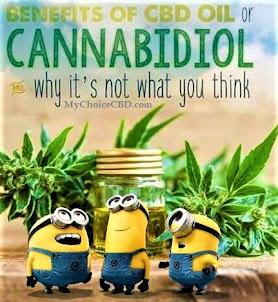 Benefits of Cannabidiol...