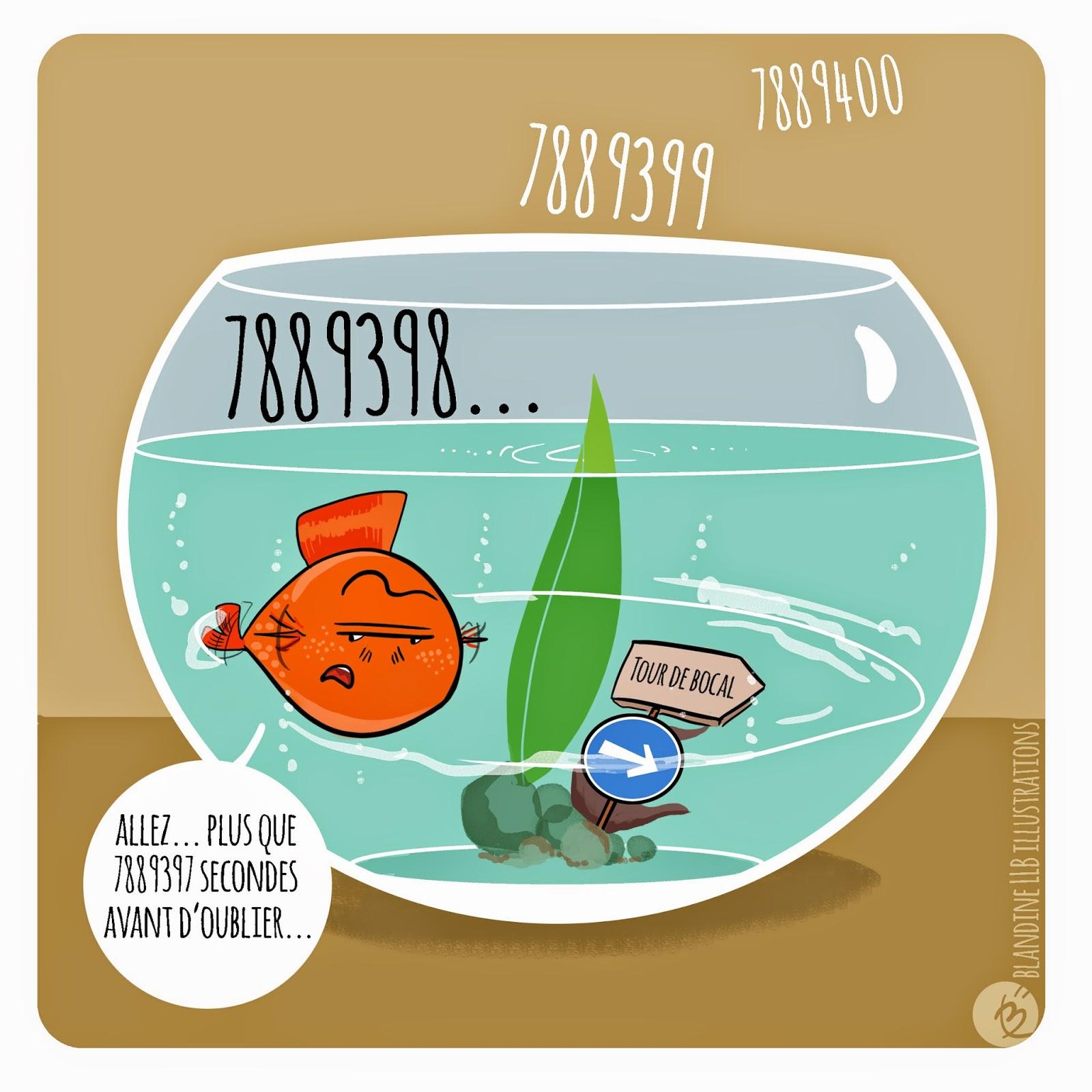 L 39 info nature peinture une m moire de poisson rouge for Achat d un poisson rouge