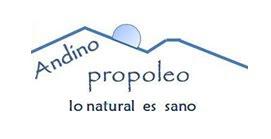 Andino Propóleo, Productos apícolas