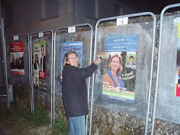élections cantonales 2011 entretien des affiches