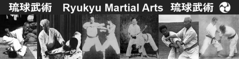 Ryukyu Martial Arts