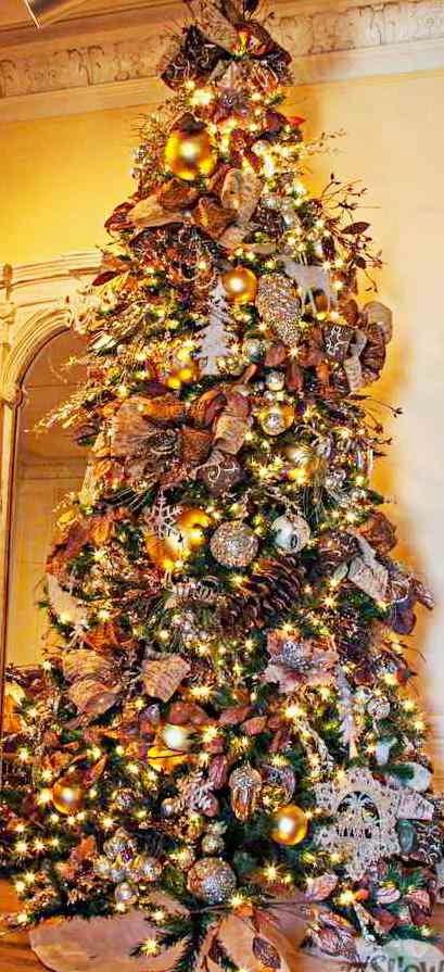 árvore-de-natal