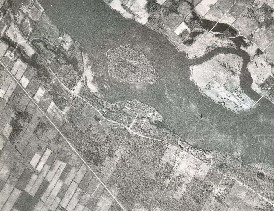 Bois-de-Saraguay (1931)