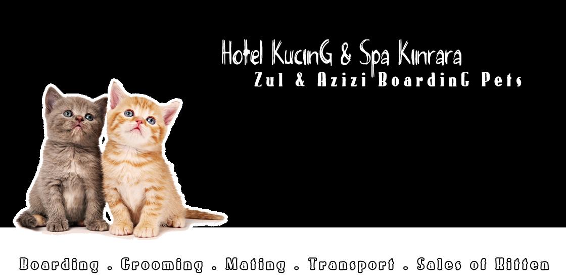 Zul & Azizi Boarding Pets