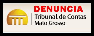 TRIBUNAL DE CONTAS - MT