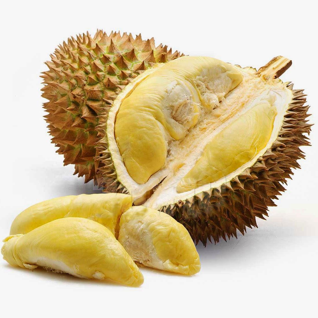 Kelezatan Terbaik dari Durian