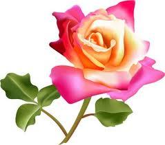 Remedii naturiste cu trandafiri de dulceata