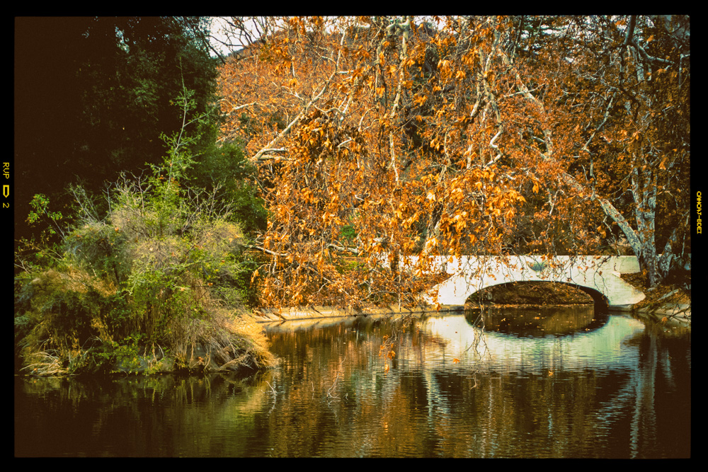 King Gillette Ranch, Santa Monica Mountains, Landscape photo, nostalgia, Analog photo, fall colors.