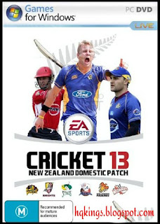 Cricket 13 New Zealand Domestic Patch